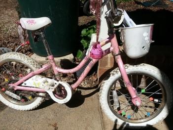 Lil Bit's Bike